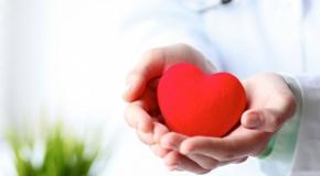לב בידיים של רופא