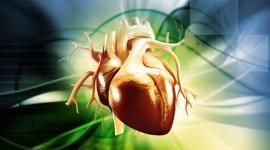 אריתמיה והפרעות קצב לב